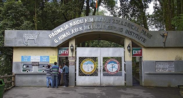 himalayan-mountaineering-zoo_darjeeling-tourist-places
