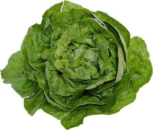 Green Leafy Vegetables 8
